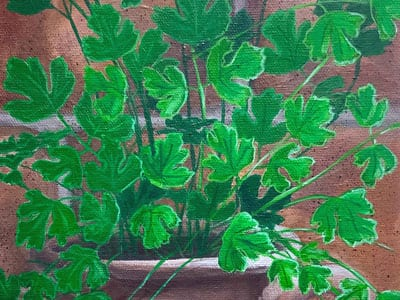 Fiona Groom Parsley