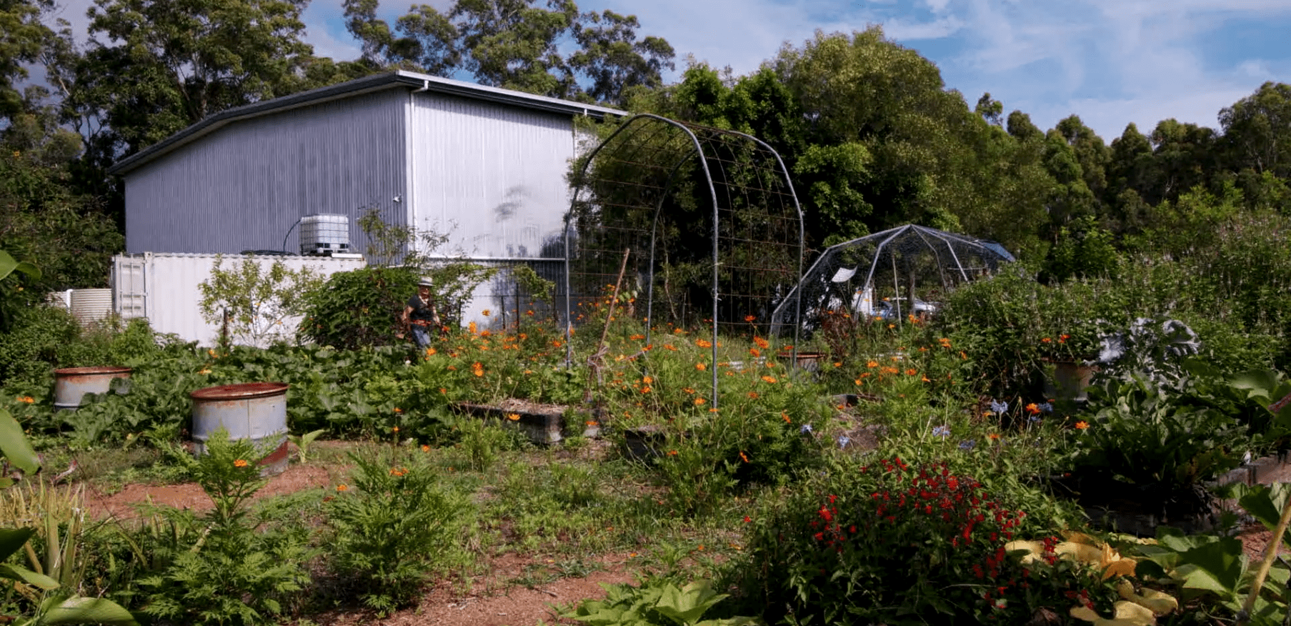 Permaculture Noosa Club Day Option 1